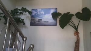 Sea Dragon Pension, Дома для отпуска  Согвипхо - big - 4