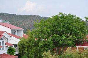 Villa Belaya Orhideya, Guest houses  Malorechenskoye - big - 44