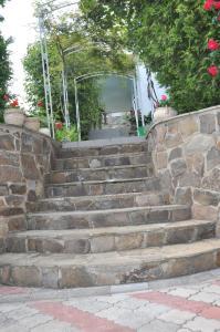 Villa Belaya Orhideya, Guest houses  Malorechenskoye - big - 11