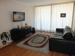 Apartment in Santiago of Chile