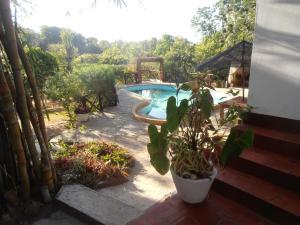 Tropical Garden House
