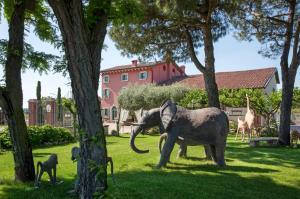 Ca' Maddalena, Farmházak  Villafranca di Verona - big - 53