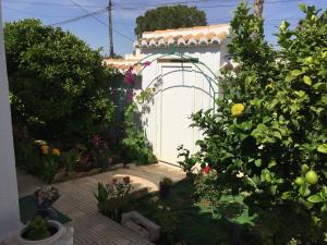 Esperanza, Guest houses  Torrevieja - big - 23