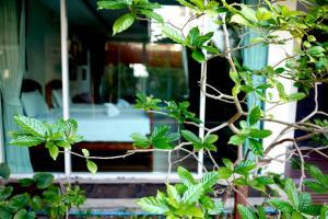 Feung Nakorn Balcony Rooms and Cafe, Hotely  Bangkok - big - 42