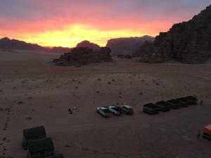 (Wadi Rum Discovery)