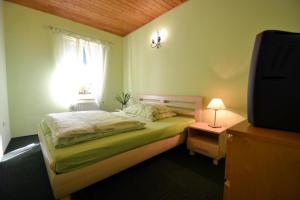Hotel Studenec