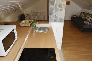 Guest house Jandric, Vendégházak  Drežnik Grad - big - 24