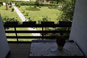 Guest house Jandric, Vendégházak  Drežnik Grad - big - 5