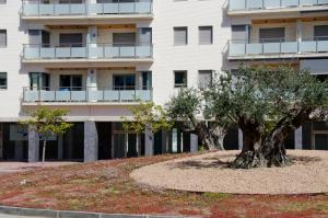 AB Sant Antoni de Calonge, Apartments  Calonge - big - 15