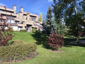 Olympic Suites, Appartamenti  Calgary - big - 8