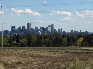 Olympic Suites, Appartamenti  Calgary - big - 2