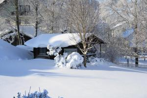 Gasthof zum Sonnenwald, Guest houses  Schöfweg - big - 29