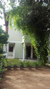 Haus Berlin, Appartamenti  Negombo - big - 10