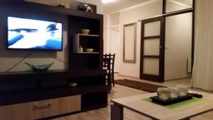 Apartment 45 - фото 12