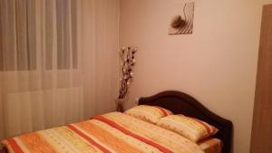 Apartment 45 - фото 9
