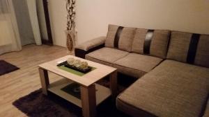 Apartment 45 - фото 3