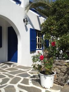 Studios Katerina, Apartmánové hotely  Platis Yialos Mykonos - big - 10