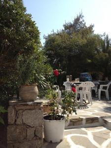Studios Katerina, Apartmánové hotely  Platis Yialos Mykonos - big - 17