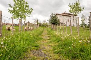 Les Fous du Village