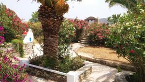 Marilu's Garden House, Апартаменты  Панормос-Миконос - big - 9