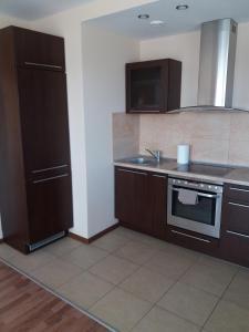 Centro apartamentai - Vingio apartamentai, Apartments  Vilnius - big - 57