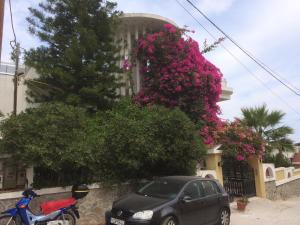 Artemidos Apartment, Apartmány  Agia Marina Aegina - big - 7