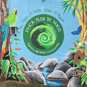 Flor de Mayo Airport Nature Reserve, Guest houses  Alajuela - big - 37