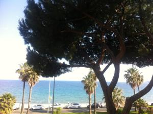Cannes Terace beach front & Sea view