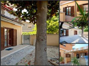 B&B La Casetta, Ferienwohnungen  Ladispoli - big - 1