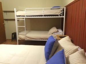 Apartamentos Chucao, Appartamenti  Osorno - big - 20
