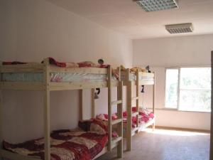 Gnezdyshko Hostel, Хостелы  Ялта - big - 53