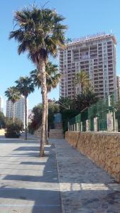 Apartment Hannibal Benidorm, Apartmány  Cala de Finestrat - big - 47