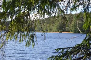 Гостевой дом У четырех озер - фото 3