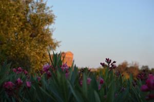 La Dimora Del Mare, Ferienwohnungen  Agrigent - big - 47