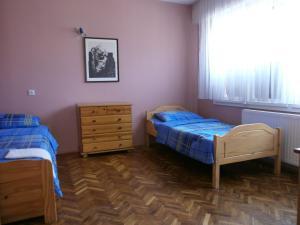 Villa Dimitrijevic, Ville  Sremski Karlovci - big - 3