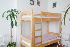 Activity Hostel