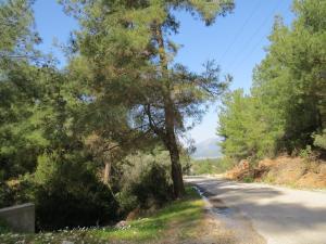 Villa Valley View Uzumlu