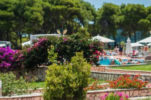 Keri Village & Spa by Zante Plaza (Adults Only), Hotely  Keríon - big - 30