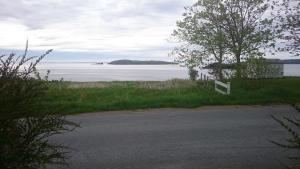 Clowns Cove Corner