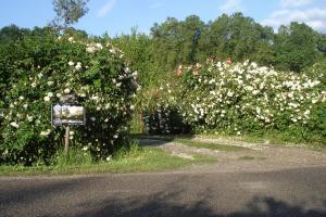 Gîte Au Jardin, Case vacanze  Meilhan-sur-Garonne - big - 44