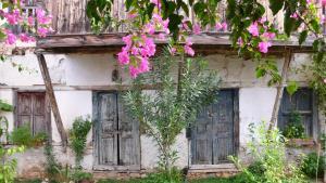 Courtyard, Hotely  Kalkan - big - 37