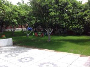 Гостевой дом Эсмеральда - фото 23