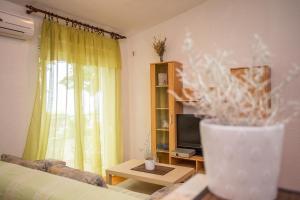 Guest House Dada, Affittacamere  Senj - big - 20