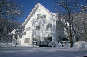 Alpine Inn Mizushiro
