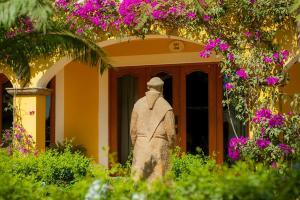 El Encanto Inn & Suites, Отели  Сан-Хосе-дель-Кабо - big - 55