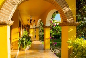 El Encanto Inn & Suites, Отели  Сан-Хосе-дель-Кабо - big - 64