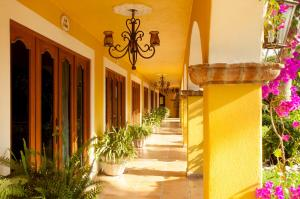 El Encanto Inn & Suites, Отели  Сан-Хосе-дель-Кабо - big - 65