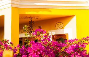 El Encanto Inn & Suites, Отели  Сан-Хосе-дель-Кабо - big - 46