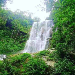 Pousada Costa Verde, Penzióny  Vila Muriqui - big - 43