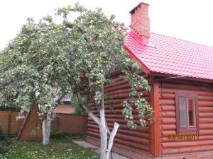 Коттедж На Ягодной 140 - фото 3